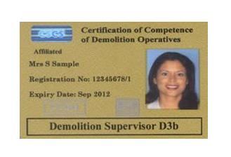 card-negru-demolitions-supervisor